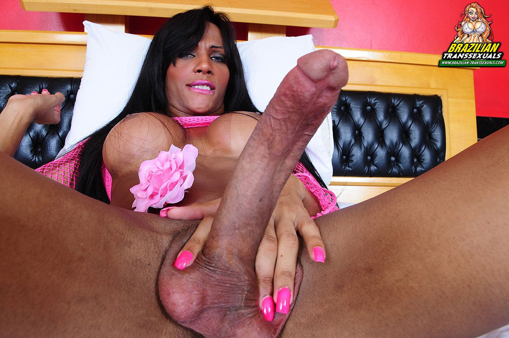 Black shemale with big cock