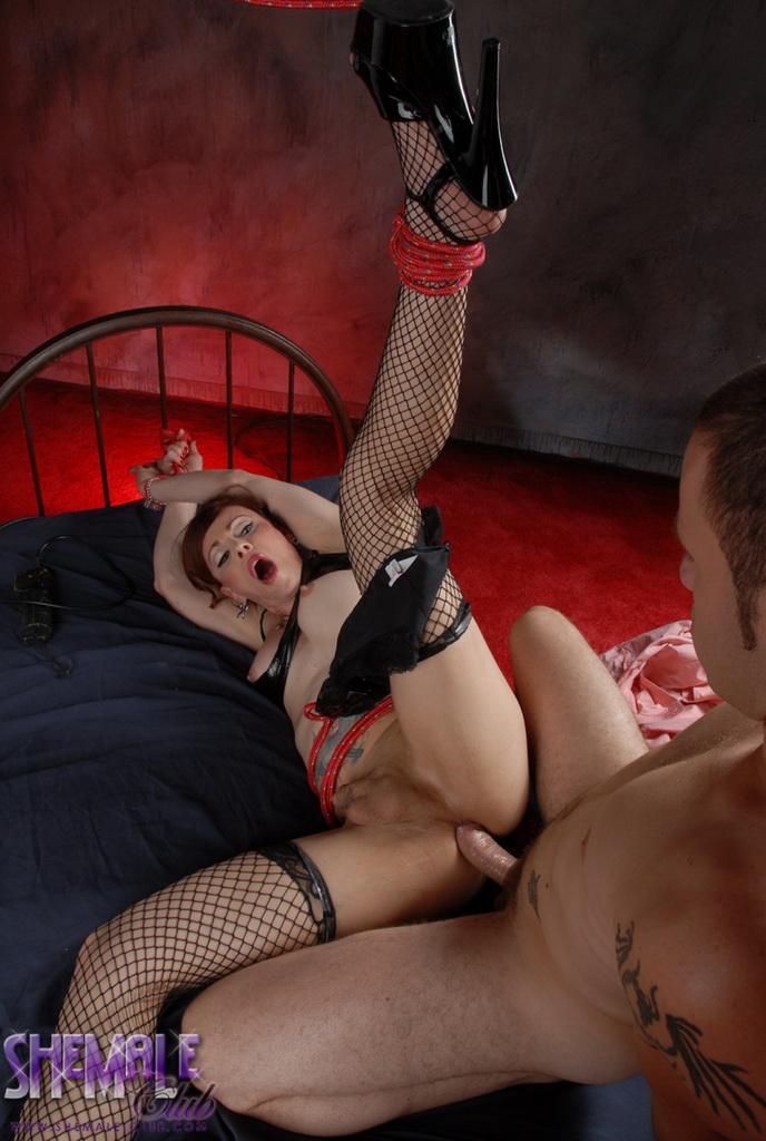 порно трансвеститы бдсм