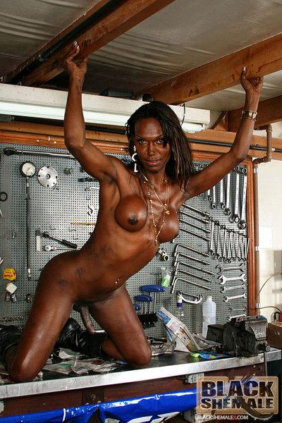 Bikini allstar kerriana