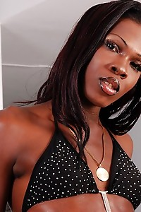 Taylor is a dark chocolate ebony tranny with delicious skin and a hard chocolate cock!