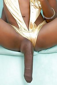 Big Sexy Shemale Dicks