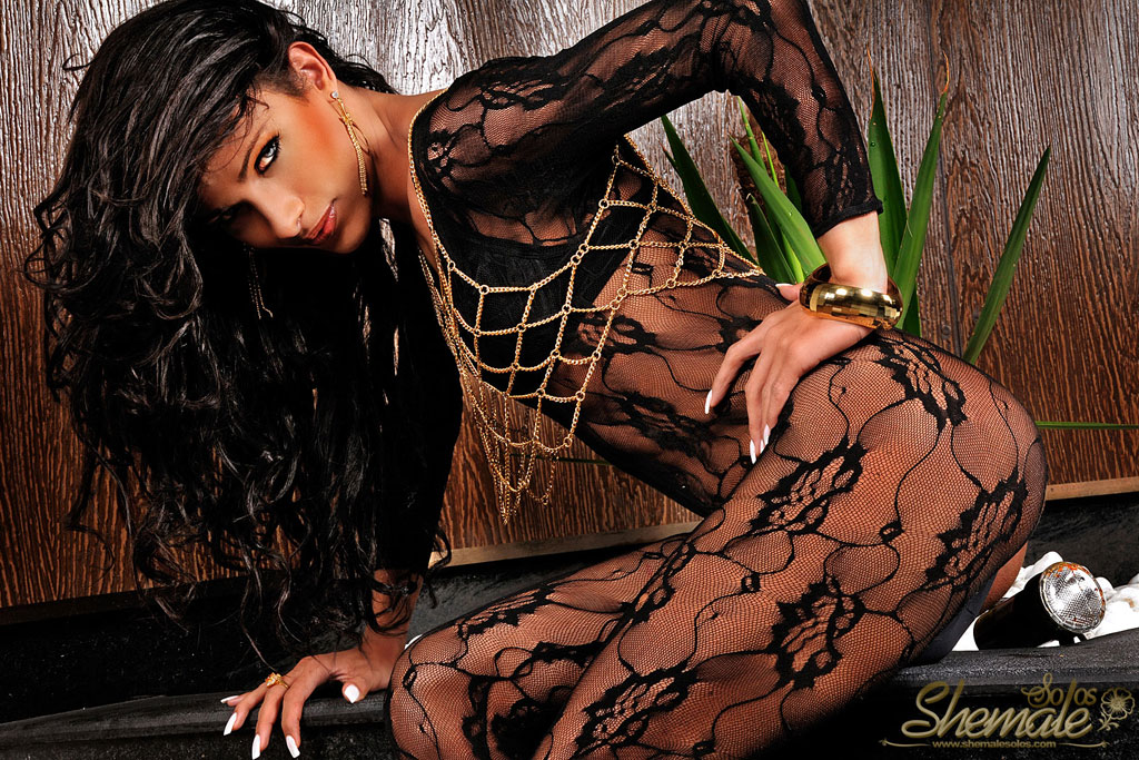 Galleries Total Tranny 112