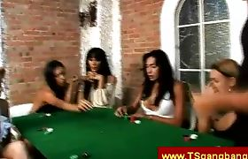 Gambling with brazilian trannies