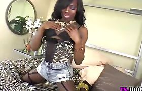 Black tgirl in stockings and lingerie